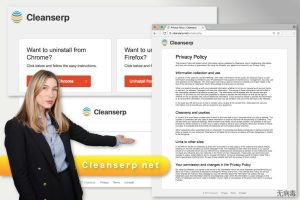 Cleanserp.net 病毒