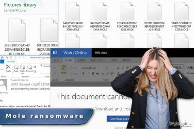 Mole 勒索软件病毒的图像·