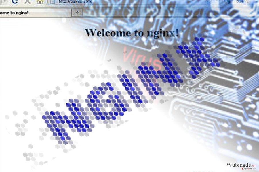 图片解说了 Nginx 恶意软件