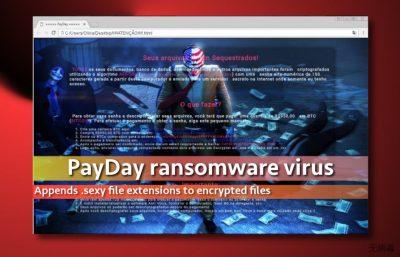 PayDay 病毒的图像