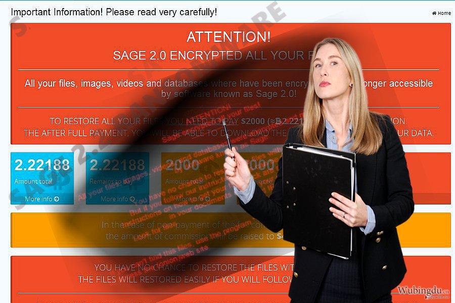 Sage 2.2 病毒的图像