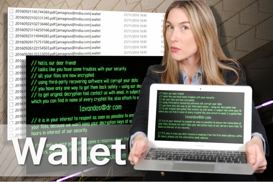 Wallet 勒索软件图像