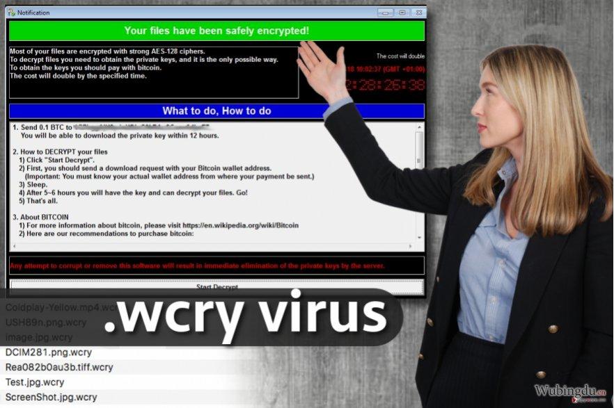 .wcry 文件扩展病毒