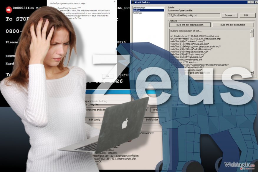 Zeus 病毒的图像
